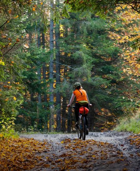 Mountain Bike Colli Euganei