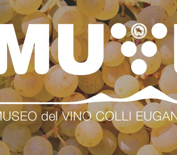 Muvi – il Museo dei Vini dei Colli Euganei
