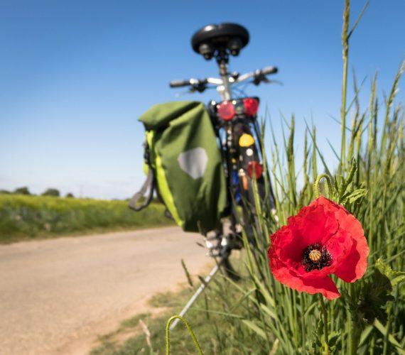 Perché andare in bici fa bene!