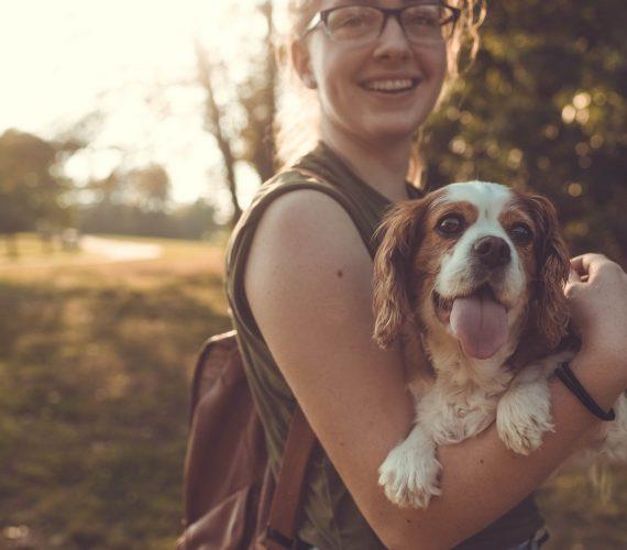 Pet-friendly: gite fuori porta da scoprire