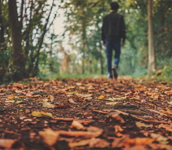 Autunno: la miglior stagione per le passeggiate