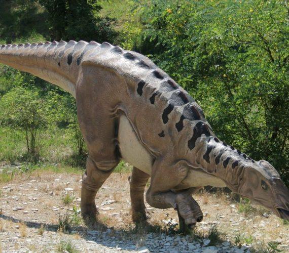 Giganteschi Dinosauri appaiono sui Colli Euganei